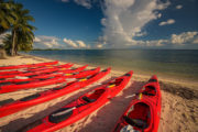 red kayaks on a beach